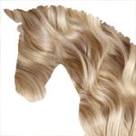 Шампунь для лошадей – для людей