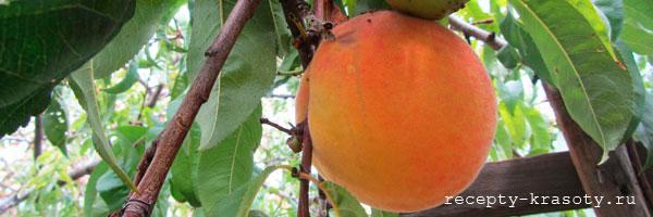 Маска для лица с персиком